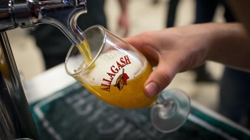 Pouring a pint of Allagash craft brew